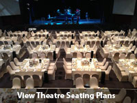 theatre on the track venue seating plan